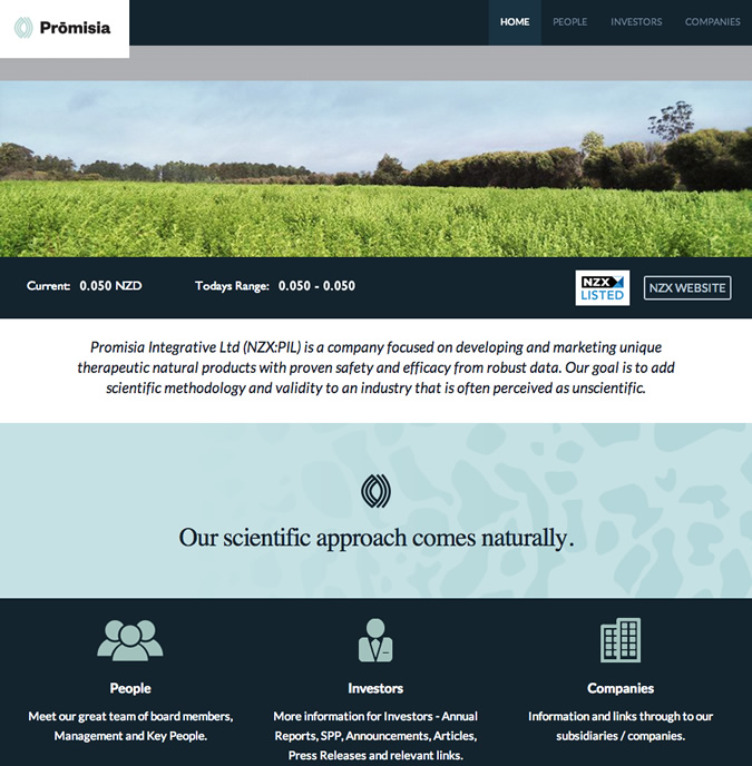 promisia-website-wellington-websites